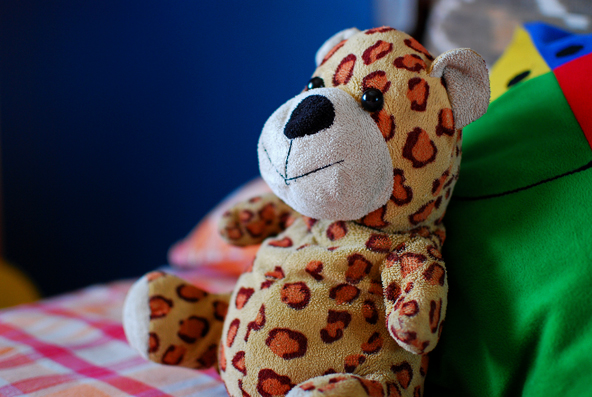 Mr Leopard - The always-lazing, cheerful friend