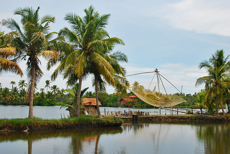 Ezhikkara: Of lagoons, paddy fields and greenery