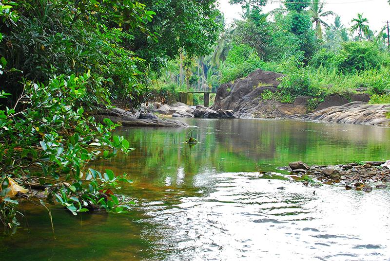 The stream near his farm